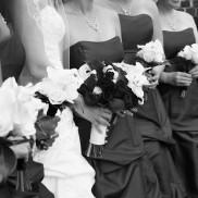 Wedding 115