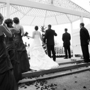 Wedding 135