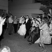 Wedding 347