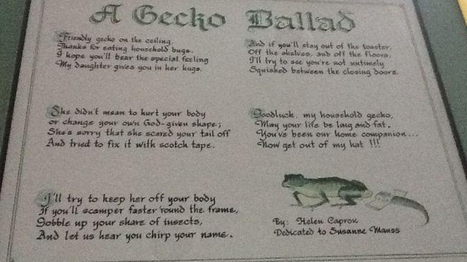 A Gecko Ballad