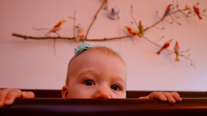 Selah's Nursery!